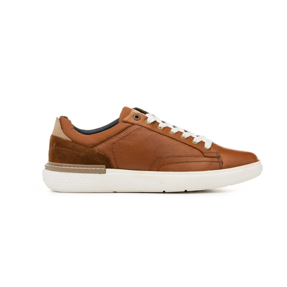wrangler tabac DISCOVERY DERBY 02
